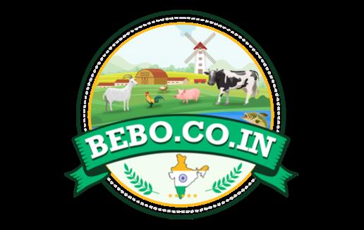 Bebo India