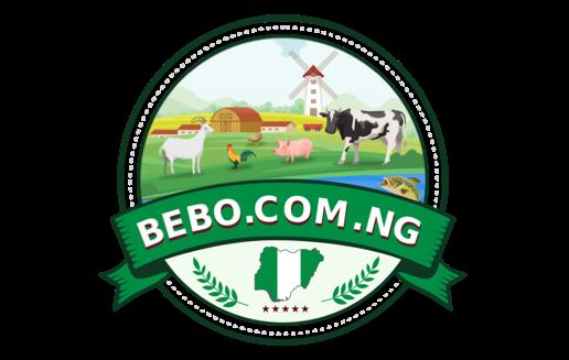 Bebo Nigeria